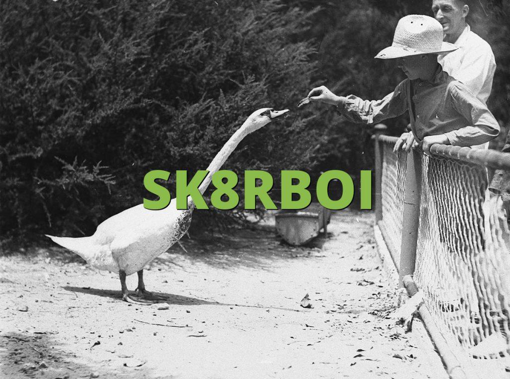 SK8RBOI