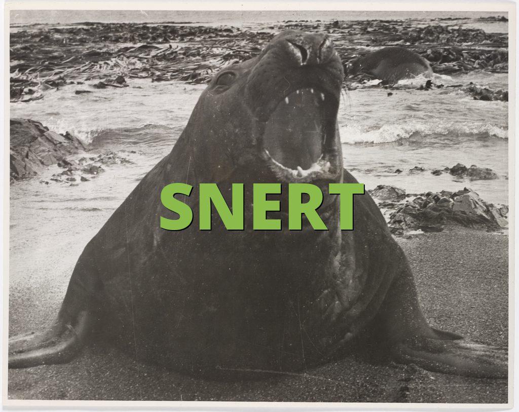 SNERT