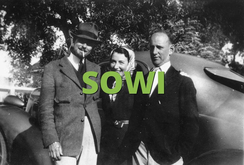 SOWI