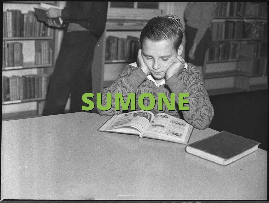 SUMONE