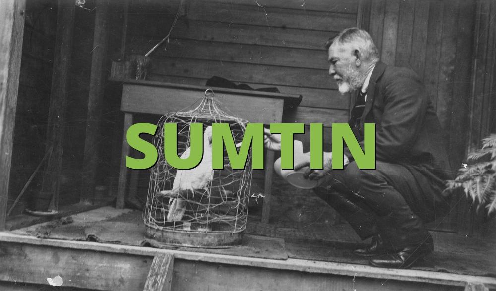 SUMTIN