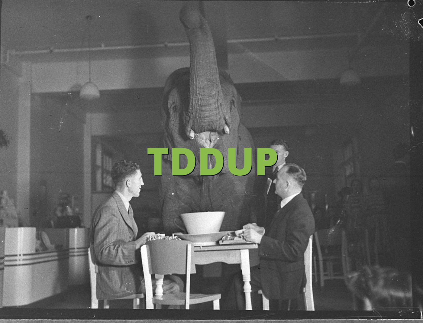 TDDUP