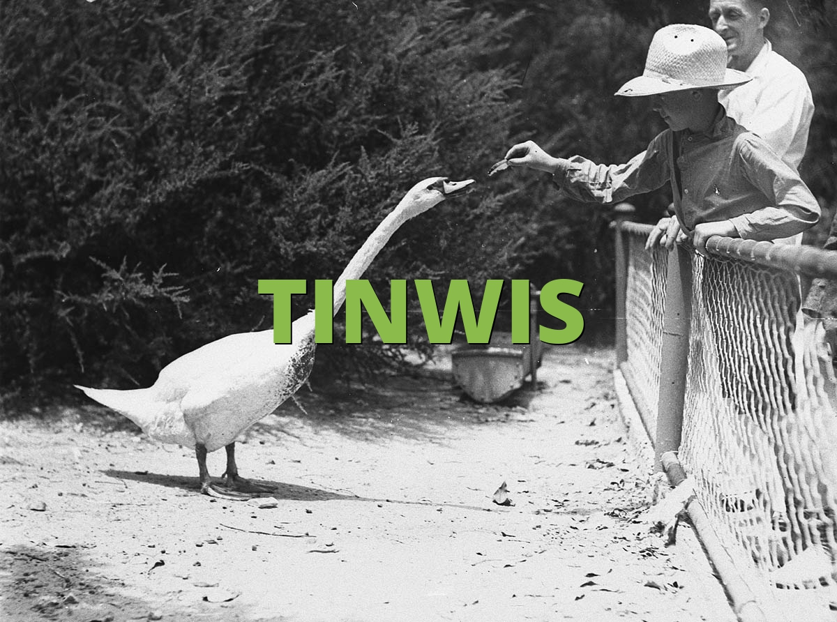 TINWIS