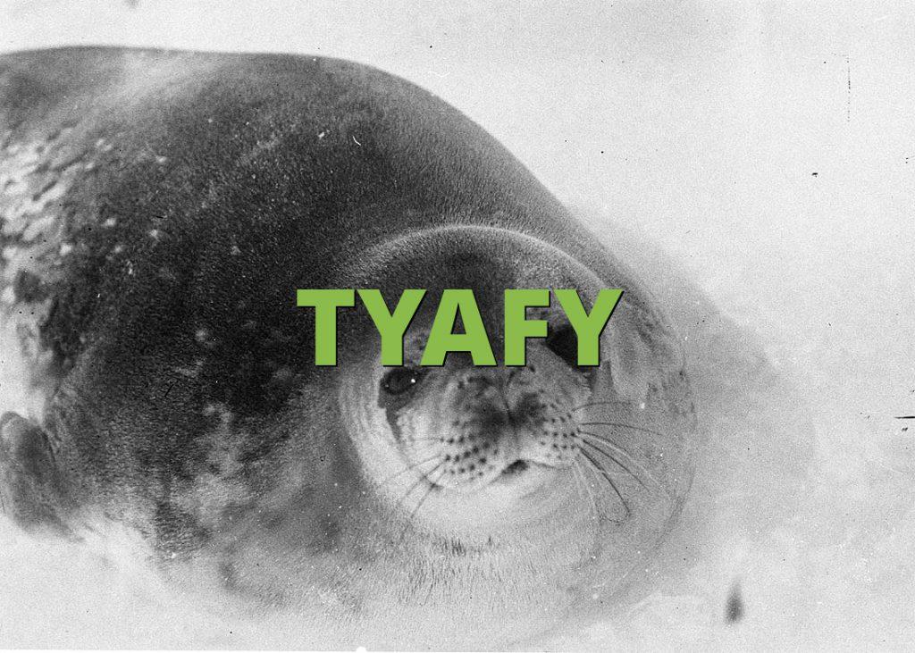 TYAFY