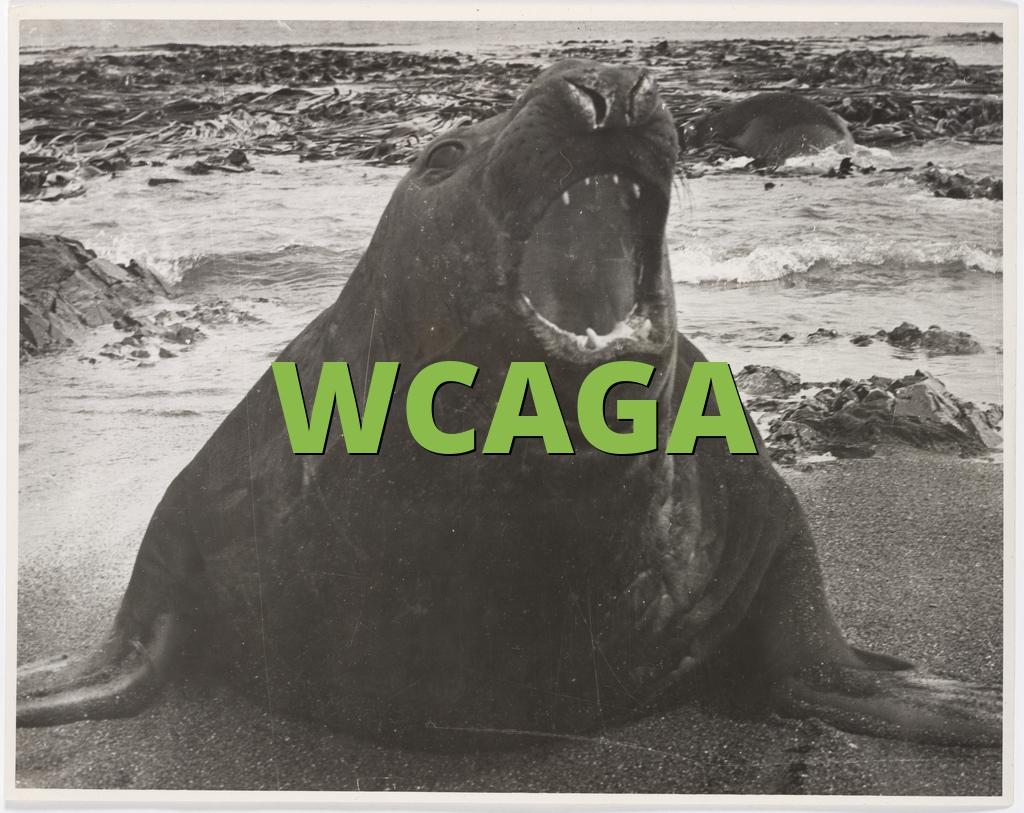 WCAGA