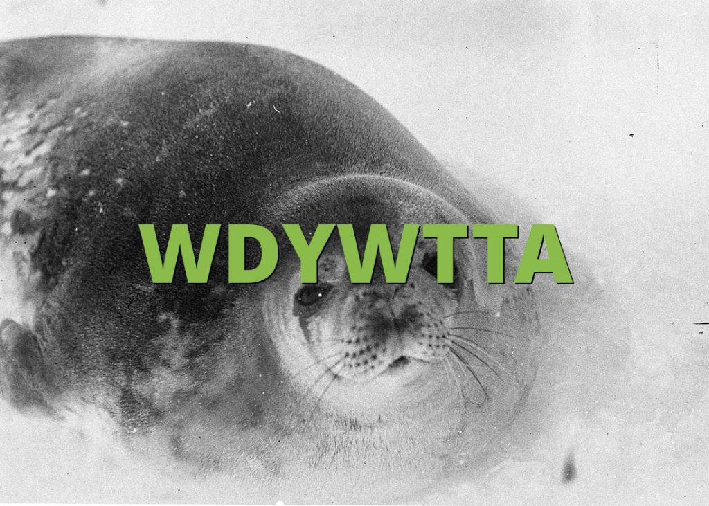 WDYWTTA