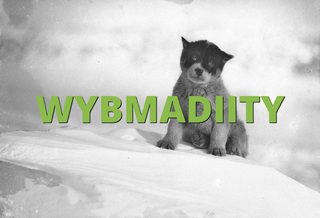 WYBMADIITY