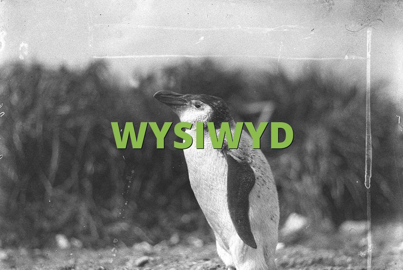 WYSIWYD
