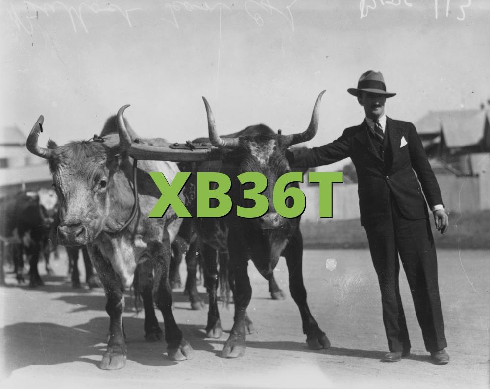 XB36T
