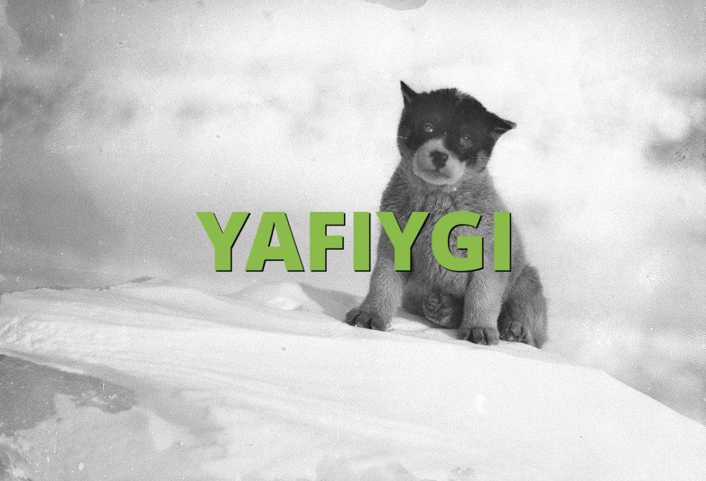 YAFIYGI