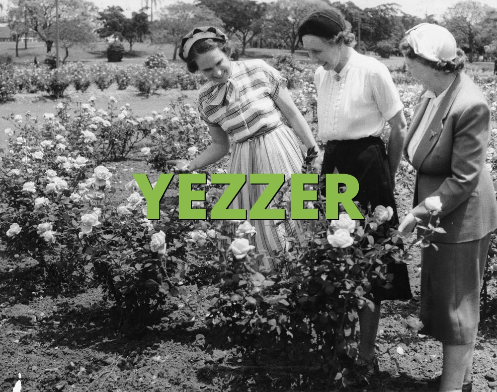 YEZZER