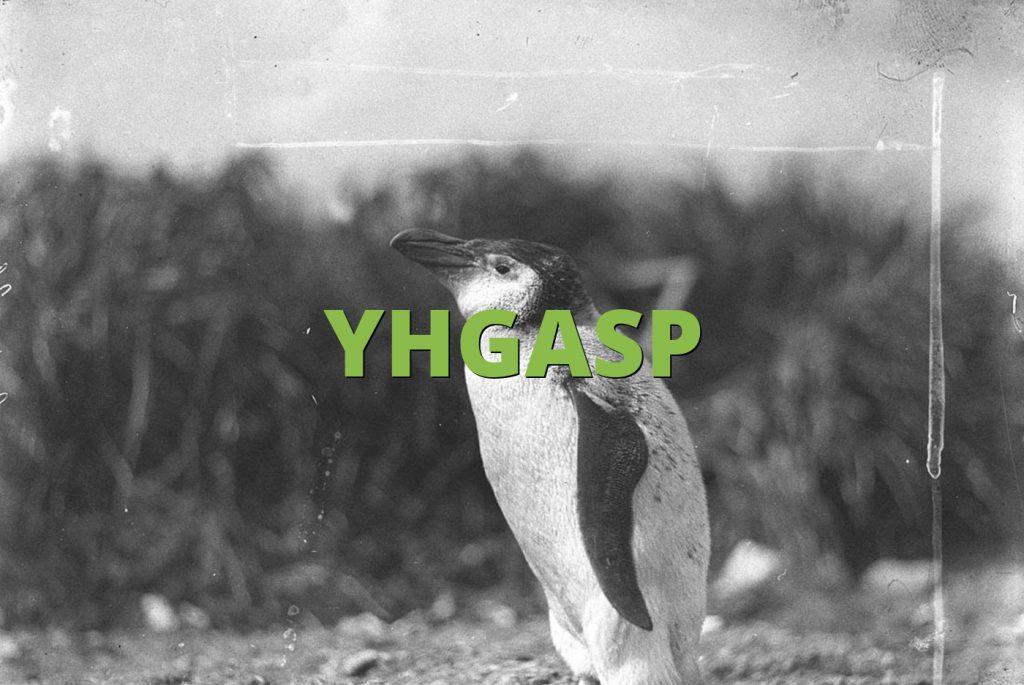 YHGASP