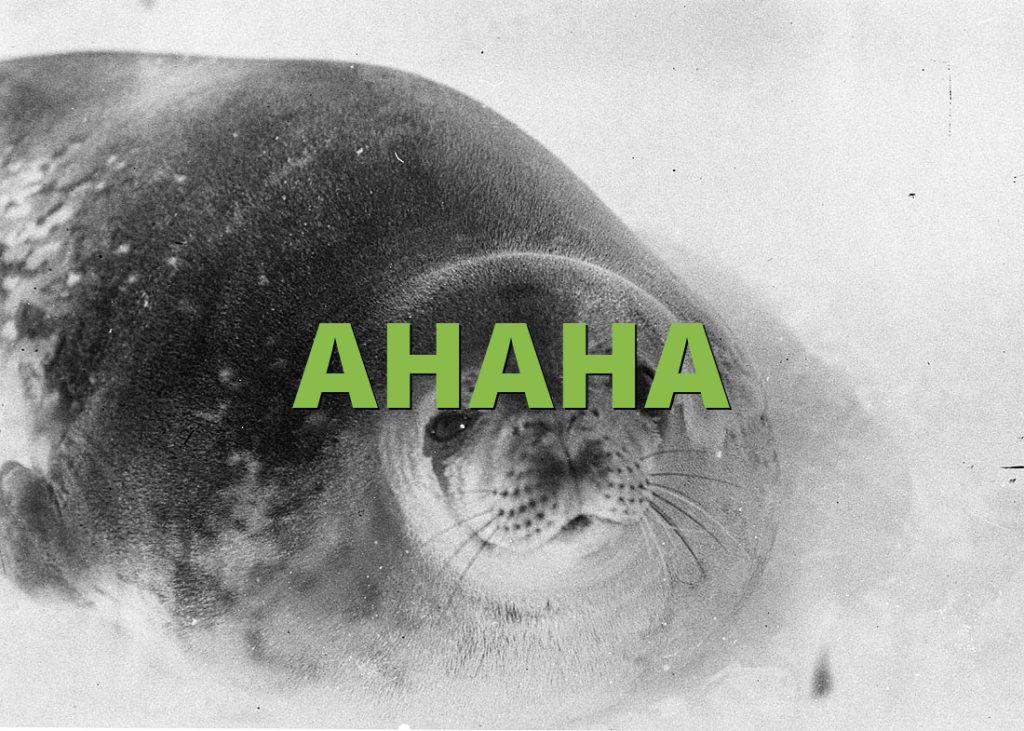 AHAHA