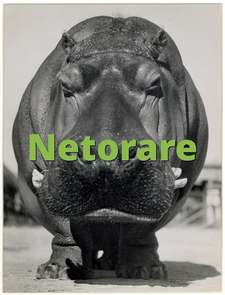 Netorare